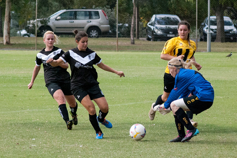 Division 2 women v Elizabeth Vale