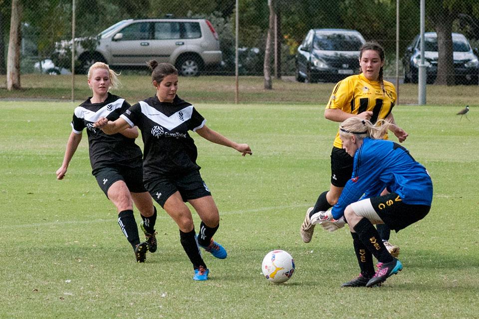 Elizabeth Vale Soccer Club